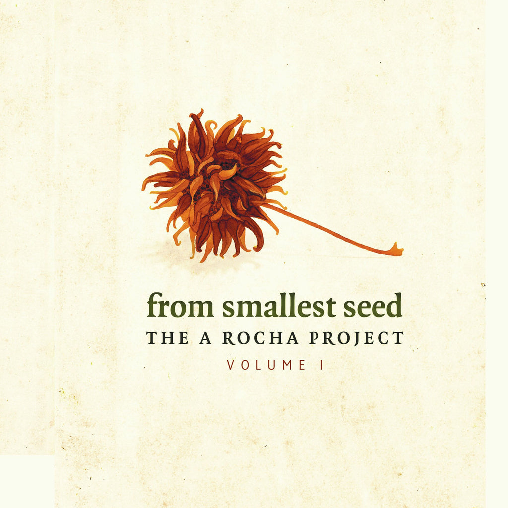 From Smallest Seed