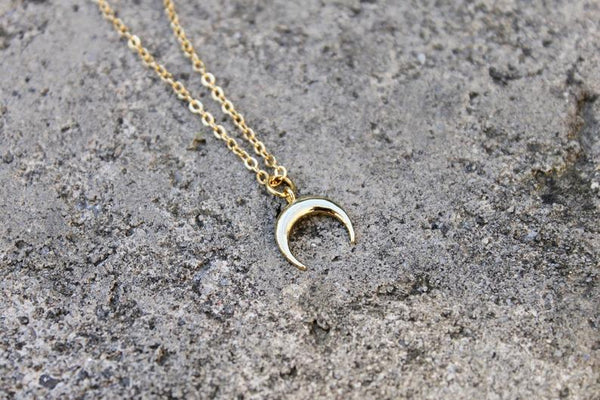 Little Gold Horn Necklace