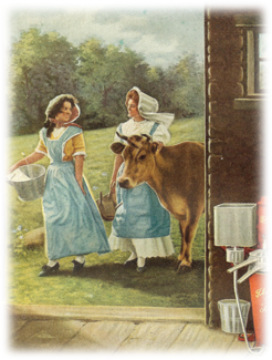 Taking a cow to milk.