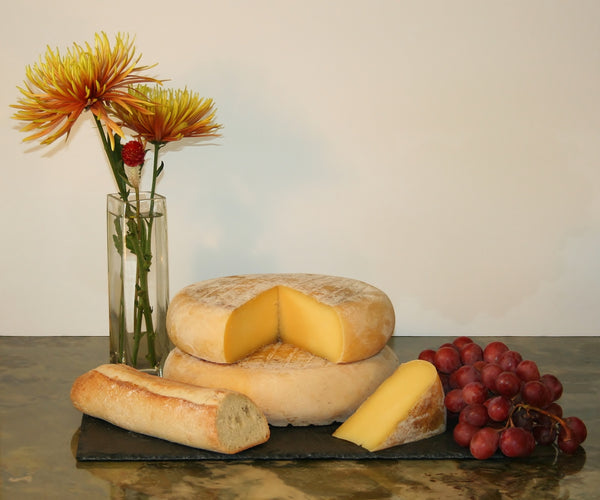 Raw Panoche Jersey Cheese from Claravale Farm - 4