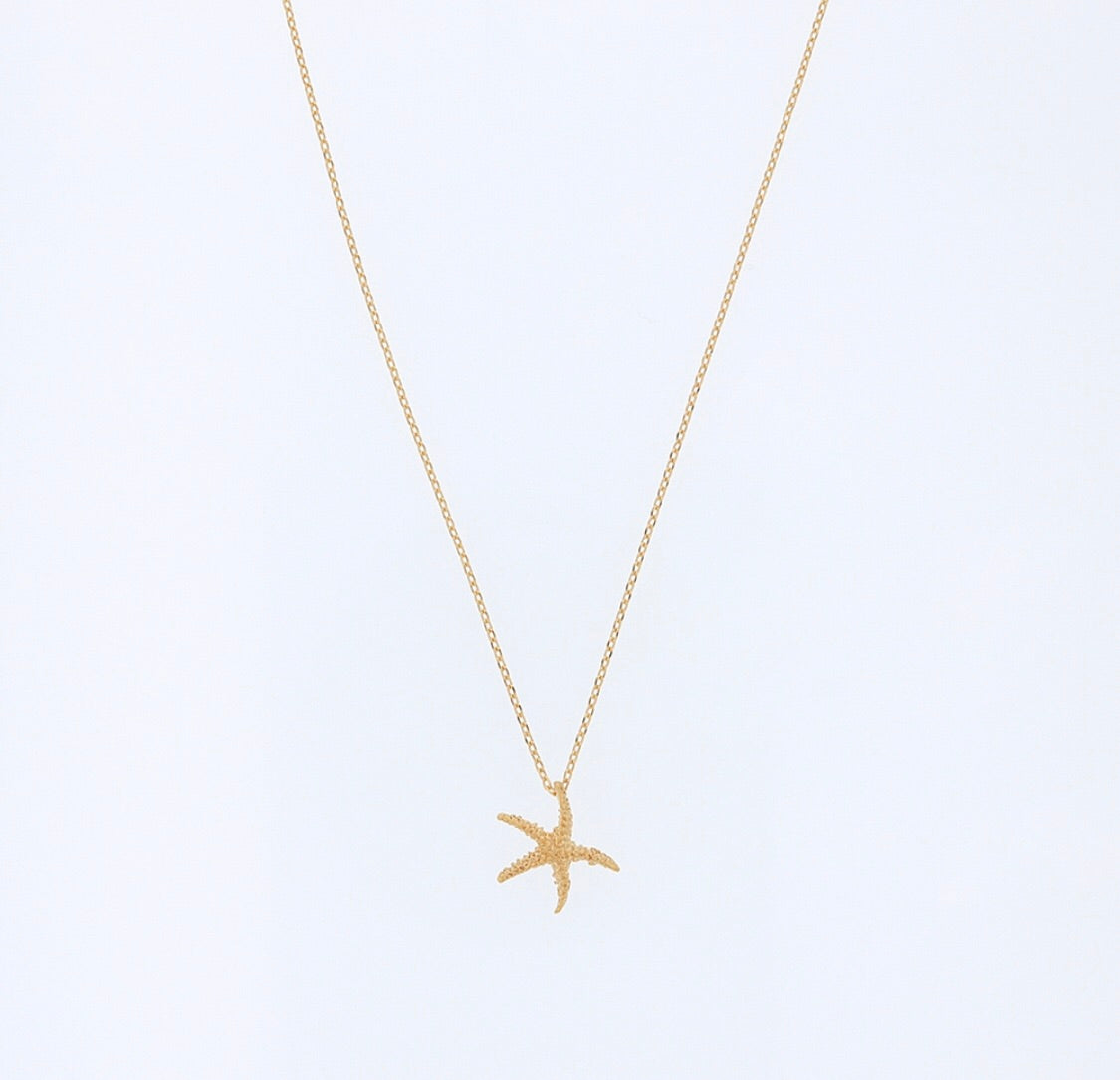 Jolie and Deen Starfish Necklace