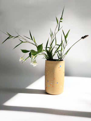 Sprinkles on Speckles Vase