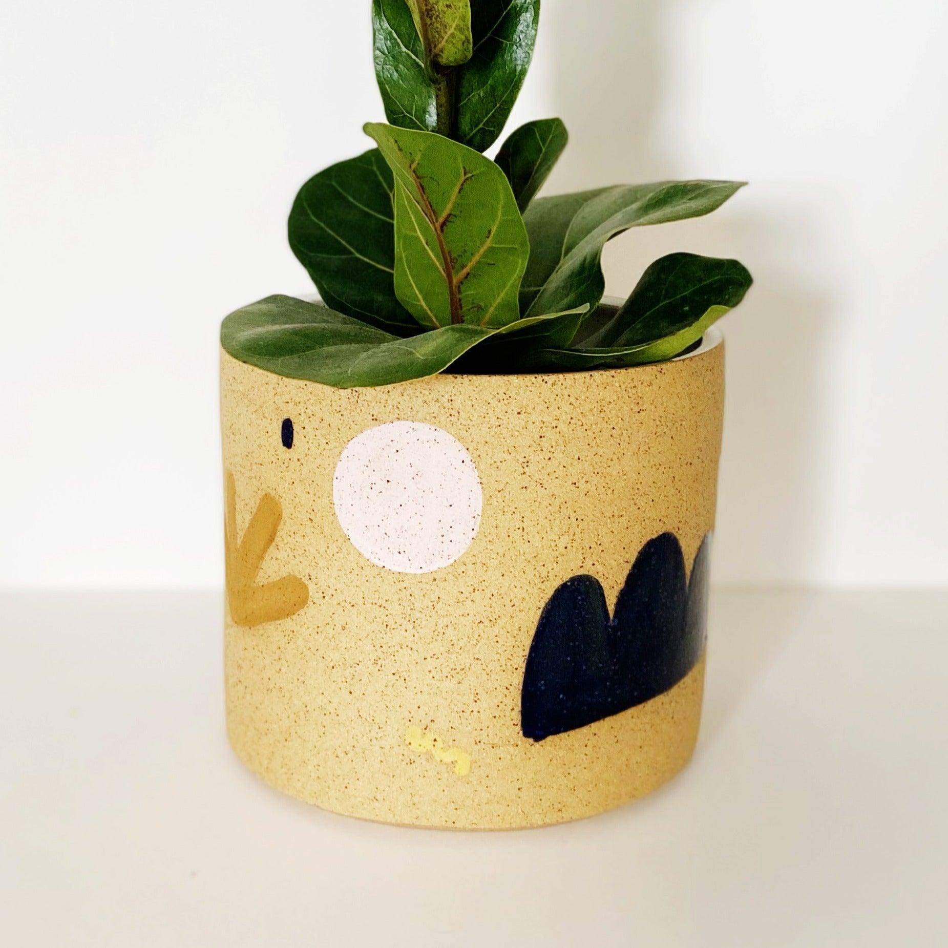 Earthy and Shapes Planter