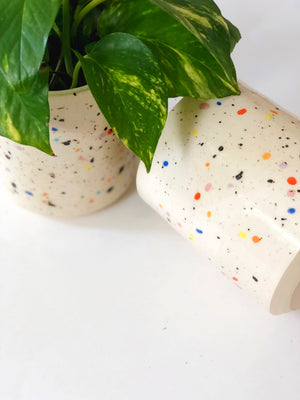 Double Sprinkles Planter