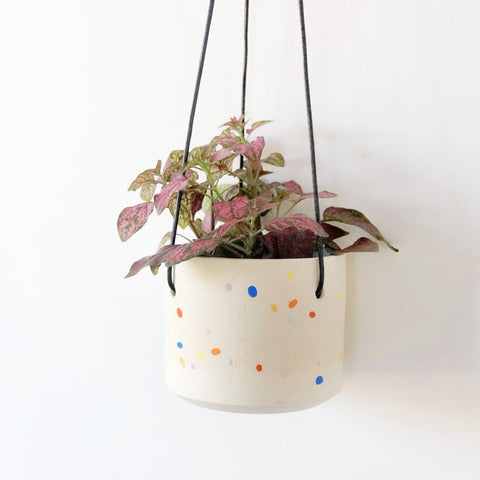 Sprinkles Pattern Hanging Planter