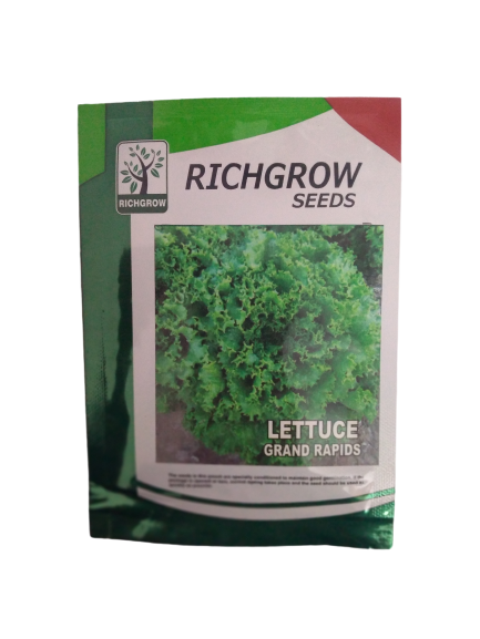 Lettuce Grand Rapid Small Pack (RichGrow Seeds)