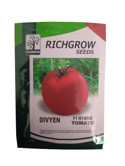 Divyen Hybrid Tomato Small Pack (RichGrow Seeds)