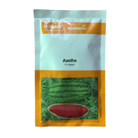 Aastha/आस्था Watermelon (Nunhems)