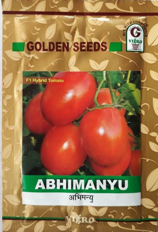 Abhimanyu/अभिमन्यु F1 Hybrid Tomato (Golden Seeds) - Farmers Stop