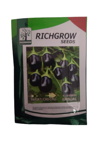 Brinjal Chu Chu Small Pack (RichGrow Seeds)