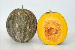 Deesha/दिशा Winter Squash (Pumpkin) (Known You Seeds) - Farmers Stop