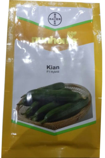 Kian/किआन F1 Parthenocarpic Cucumber Seeds (Nunhems) - Farmers Stop
