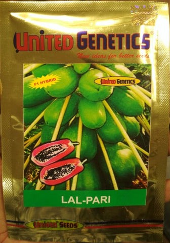 Lal Pari/लाल परी F1 Hybrid Papaya (United Genetics) - Farmers Stop