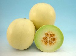 Madhumati/मधुमती Hybrid Muskmelon (Known You Seeds) - Farmers Stop