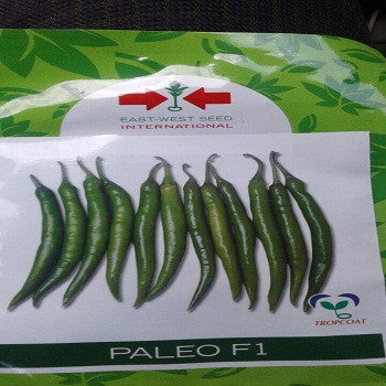 Paleo/पालेओ F1 Hot pepper (East West Seeds) - Farmers Stop