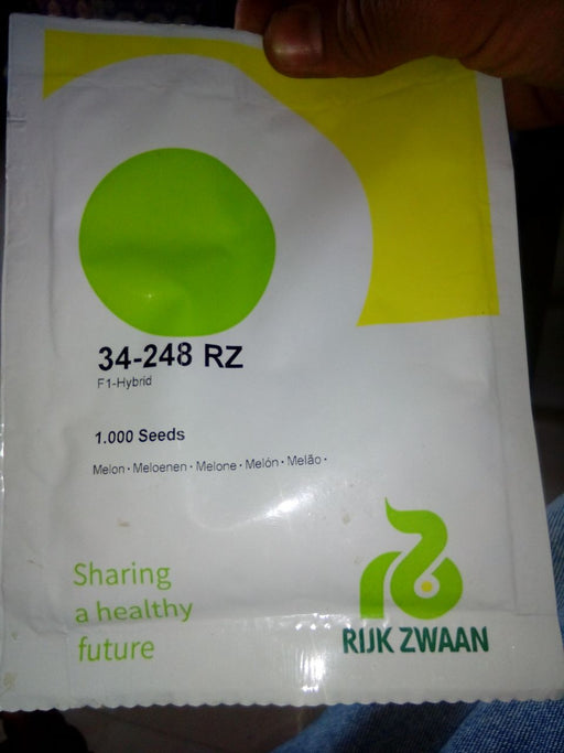 34-248 RZ Muskmelon for Polyhouse (Rizk Zwaan) - Farmers Stop