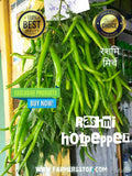 Rashmi/रश्मी Hot pepper (Known You Seeds) - Farmers Stop