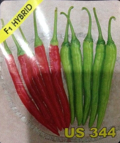 US 344 Hot pepper (US Agri Seeds) - Farmers Stop
