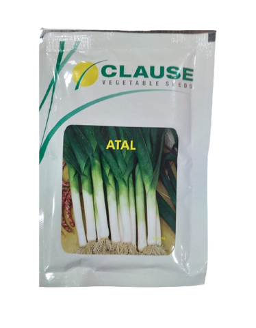 Atal Leek Spring cut Bunching Onion (Clause Seeds)