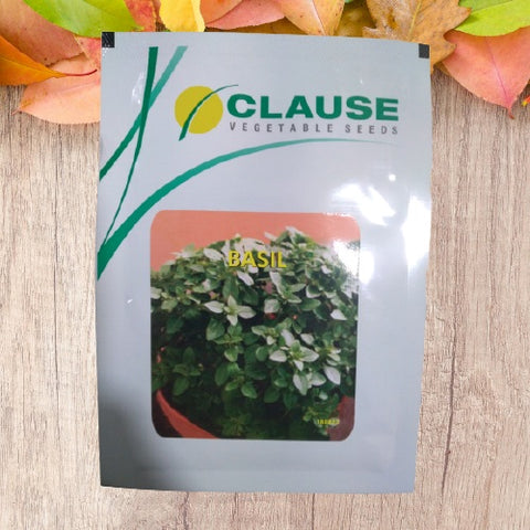 Basil (Clause Seeds)