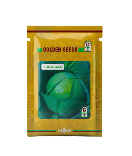 F1 HYBRID CABBAGE - GOODY BALL -65 (Golden Seeds) - 10g - Farmers Stop