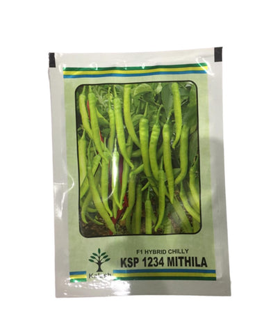 KSP 1234 Mithila F1 Hybrid Hot Pepper/Chilli (Kalash Seeds)