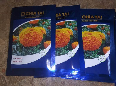 Kareena/करीना  Hybrid F1 Orange Marigold (CHIA TAI Seeds) - Farmers Stop