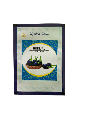 Brinjal/बैंगन F1 Hybrid Kitchen Pack (Konico Seeds)