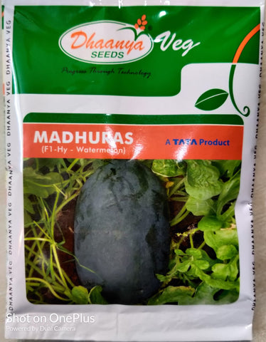 Madhuras F1 Hybrid Icebox type Watermelon (Dhanya Seeds - A TATA Product)