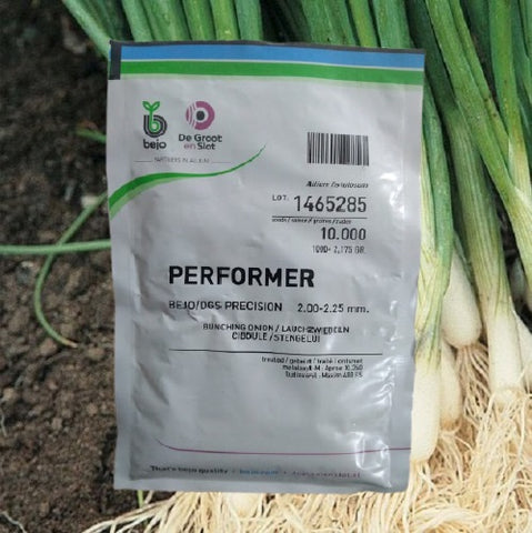 Performer Spring/Bunching Onions (Bejo)