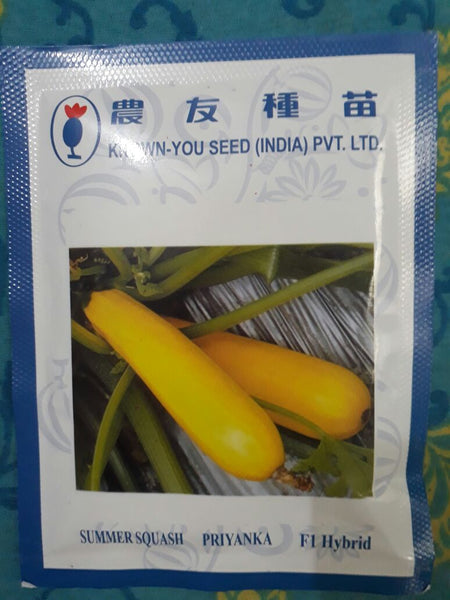 Priyanka/प्रियंका Summer Squash (Known You Seeds) - Farmers Stop