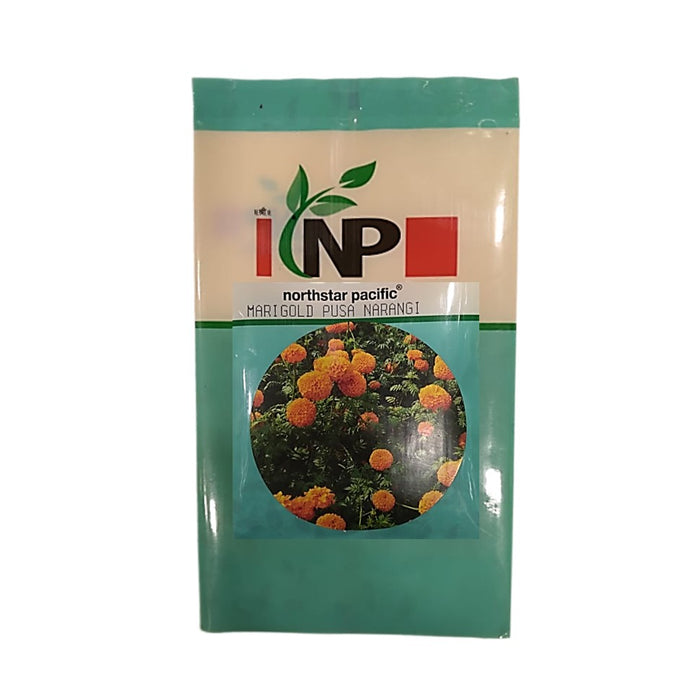 Pusa Narangi Orange Marigold Small Pack (northstar® Pacific)