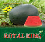 Royal King/Royal किंग Watermelon (Sagar Seeds) - Farmers Stop