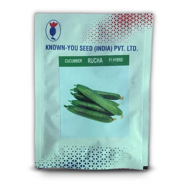 Rucha Cucumber (Known You Seeds)
