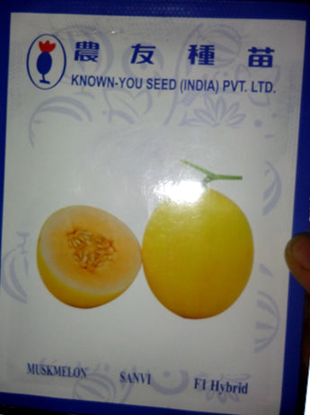 Sanvi/सानवी Muskmelon (Known You Seeds) - Farmers Stop