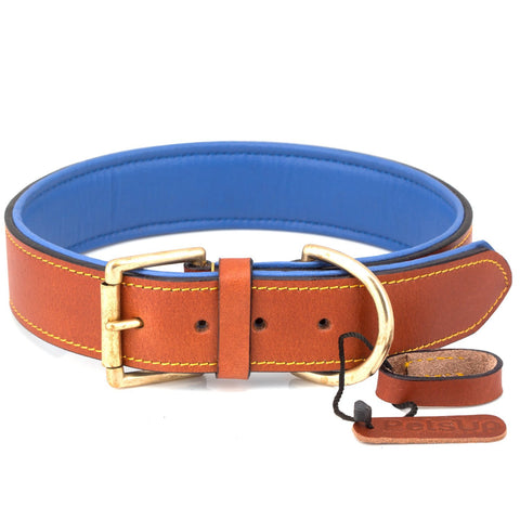PetsUp Dog Collar Neck Belt for Small To Large Dogs (Tan\Blue)