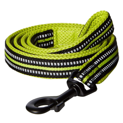 Padded 3M Reflective Dog Leash 200cm Green