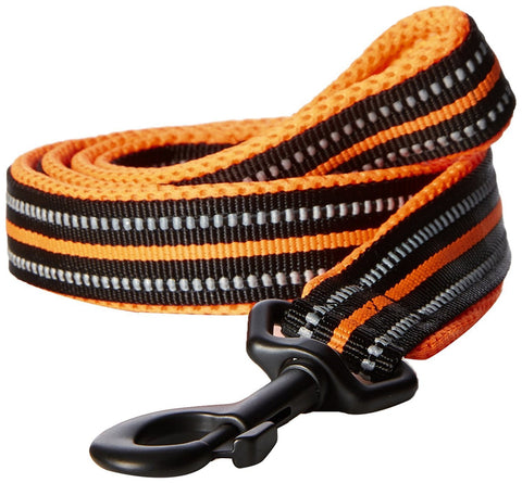 PetsUp Nylon Small Medium Large Dogs Reflective Orange Leash, 200cm Long