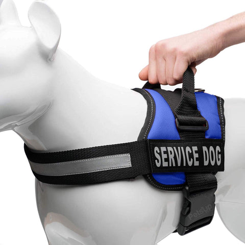 PetsUp Service Dog Harness Chest Body Belt for Dogs (Blue)