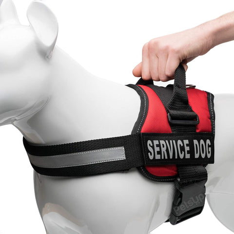 PetsUp Service Dog Harness Chest Body Belt (Red)