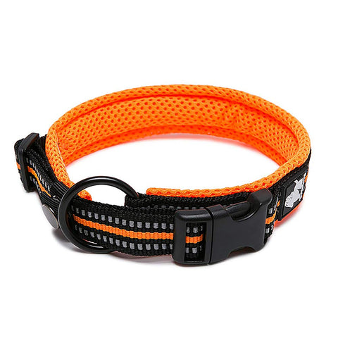 PetsUp Stylish Dog Collar Neck Belt for Small Medium Large Dogs (Orange)