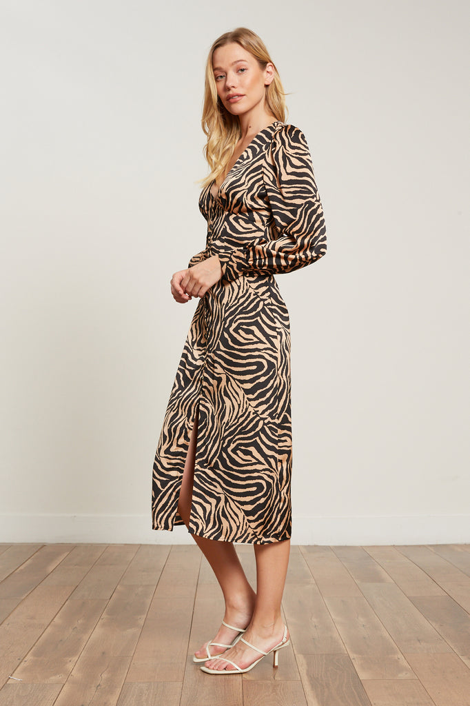 Dakota Zebra Print Dress