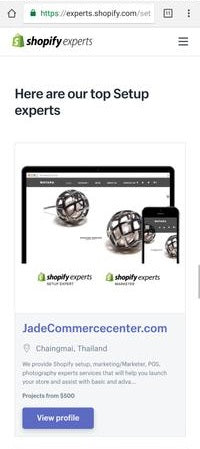 Shopify top set up expert