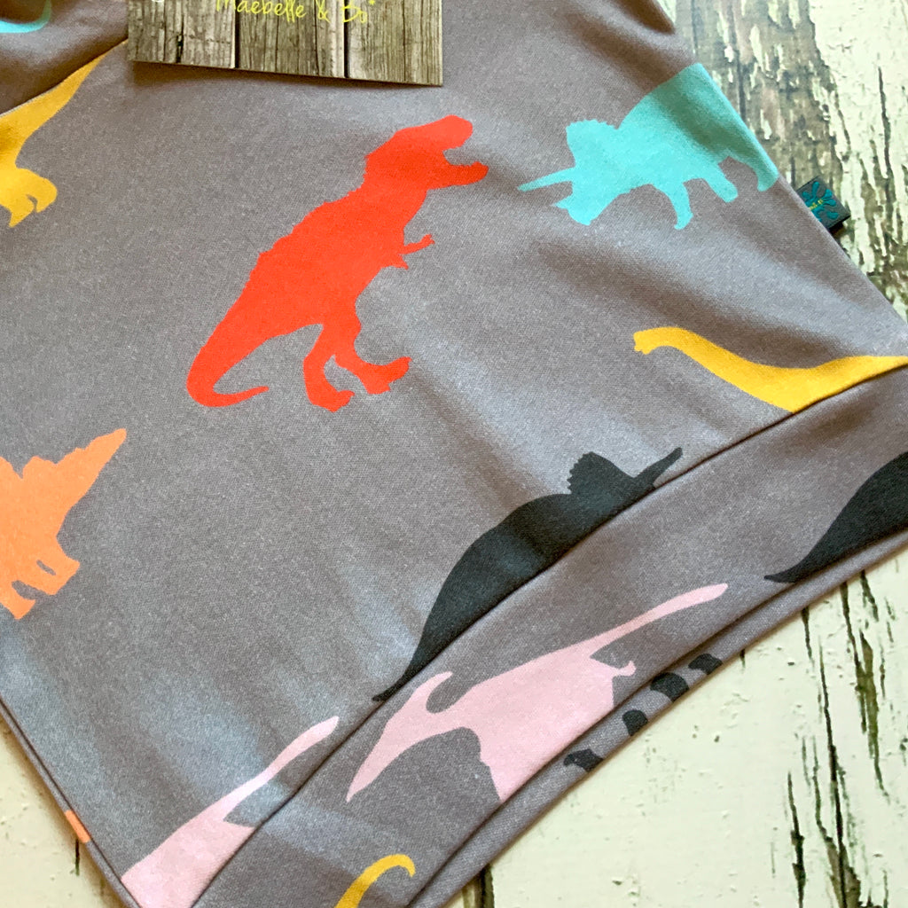 Organic dinosaur top, baby jumper, toddler jumper