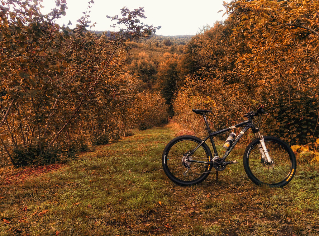 5 Ways Mountain Biking Will Improve Your Road Cycling