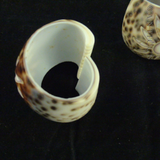 Pair of Cowrie Shell Napkin Rings, Carved Flower.