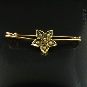 Tiny Victorian Collar or Child's Brooch.