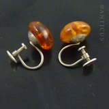 Pair of 1930s Amber Screw-Fit Earrings.