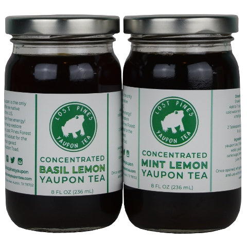 Buy Lost Pines Yaupon Tea Concentrate