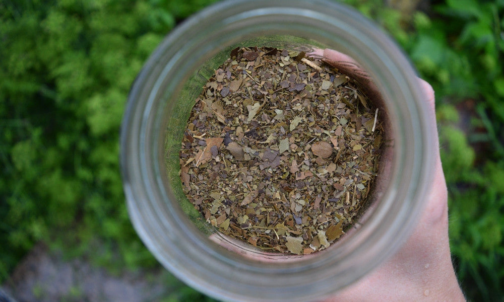 Mason jar full of loose leaf light roasted yaupon tea